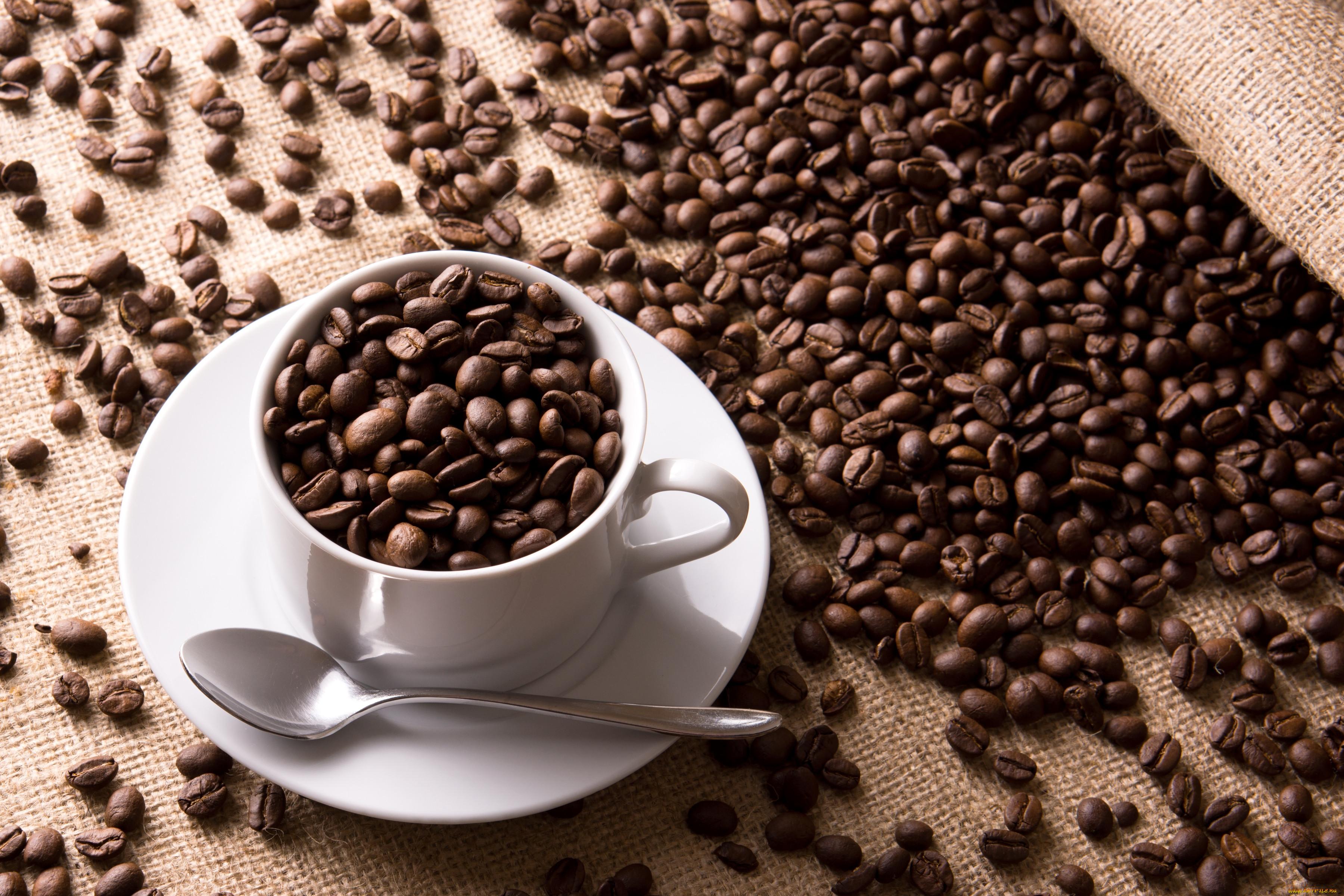 Обои кофе, зерна, стол, ложка. Разное foto 15